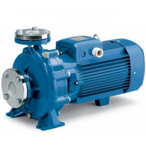 Pedrollo Centrifugal Water Pump F50-series 300~1200 L/min (Made in Italy)