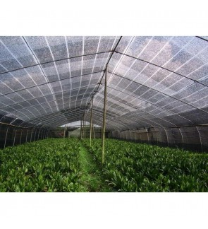 HDPE 30m Sun Shading Net 1m x 30m x 50% (Sunshade Net) (Made In Thailand)