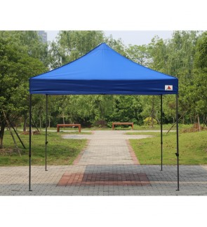Commercial Canopy 10x10ft Tent Outdoor Instant Shelter Folding + bag (Blue)
