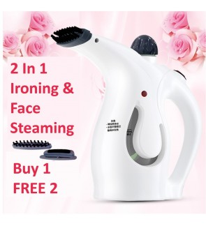 2 In 1 Portable Hand Iron Steam Garment Steamer Brush & Face Beauty Steaming